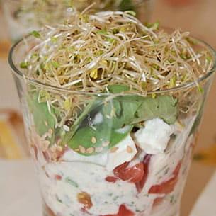 verrine tomate feta alfalfa