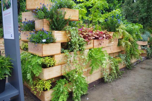 Un jardin de ville dans des boîtes