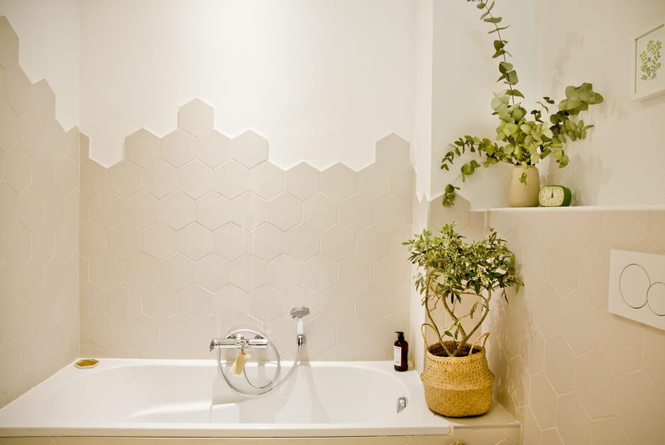 Un panier comme cache-pot dans la salle de bains