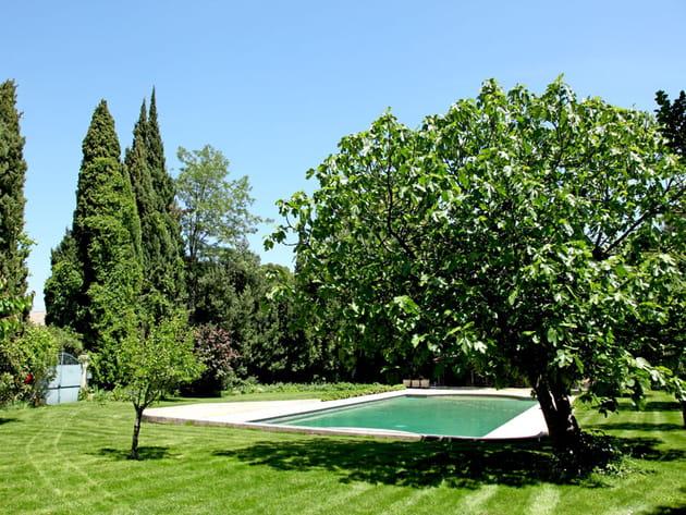Une piscine à l'écart