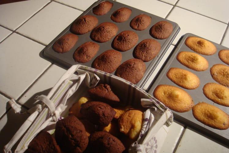 Madeleines double chocolat