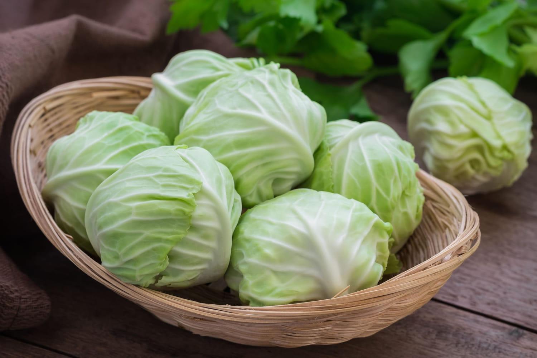 Régime soupe aux choux: recettes et conseils pour maigrir