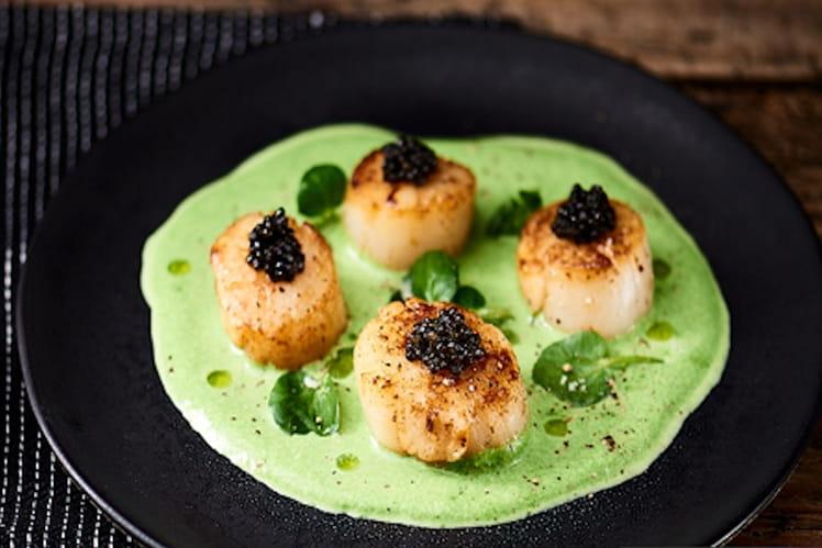 Noix de Saint-Jacques snackées, émulsion de cresson et caviar