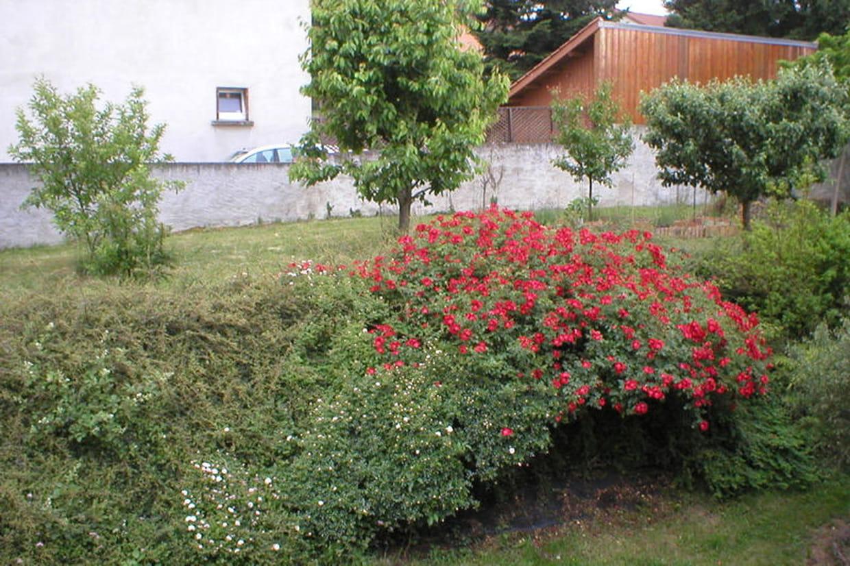 Une haie pour retenir la terre du verger for Acheter de la terre pour jardin