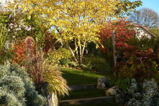 en automne le jardin est toujours beau. Black Bedroom Furniture Sets. Home Design Ideas