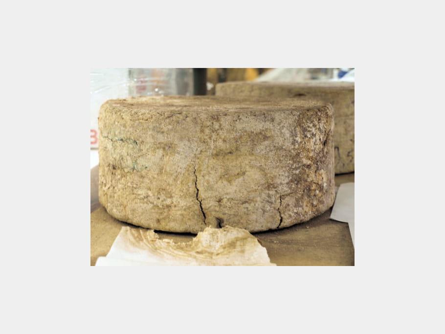 La crème des fromages