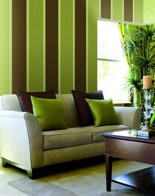 Papier peint rayures vert anis et chocolat de zambaiti for Cuisine chocolat et vert anis