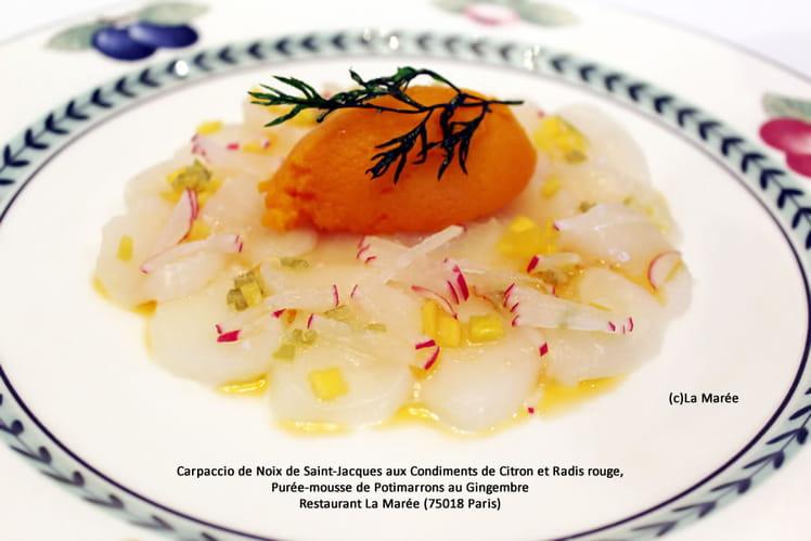 Carpaccio de noix de Saint-Jacques aux condiments de citron et radis rouge, purée-mousse de potimarrons au gingembre