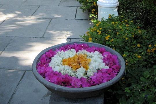 Des fleurs accueillantes
