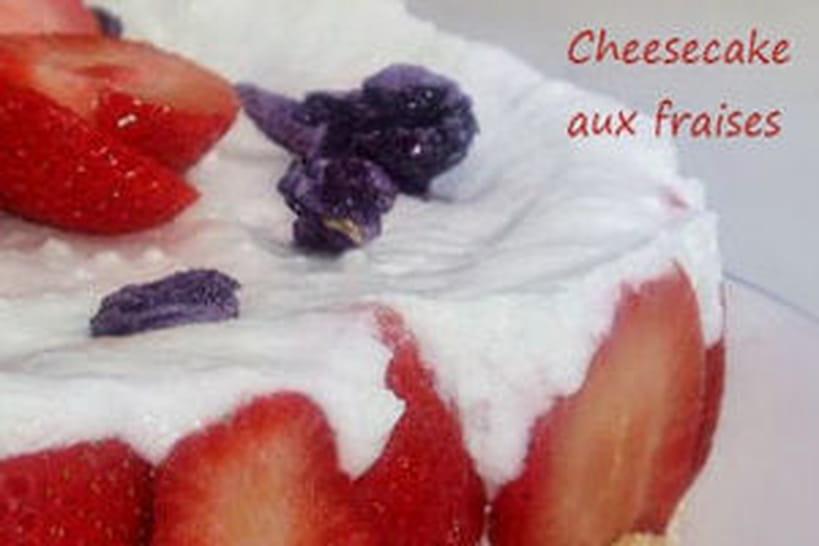 Recettes de cheesecakes de Christelle Milesi