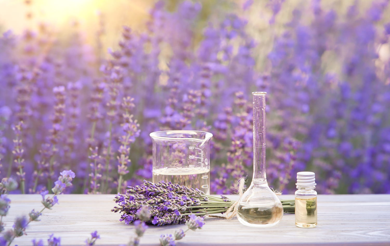 Hydrolat de lavande: acné, poux, bienfaits