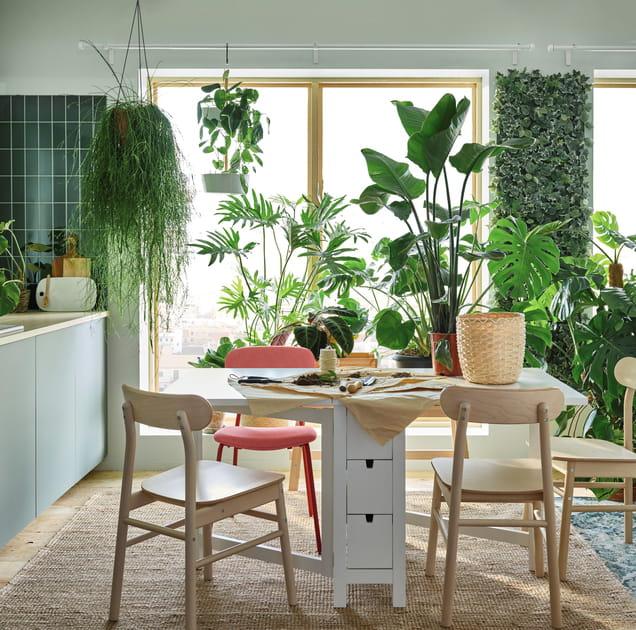 Des intérieurs à la déco green