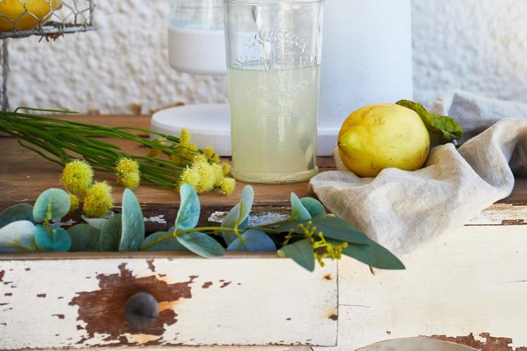 Cocktail pomme citron Mysoda