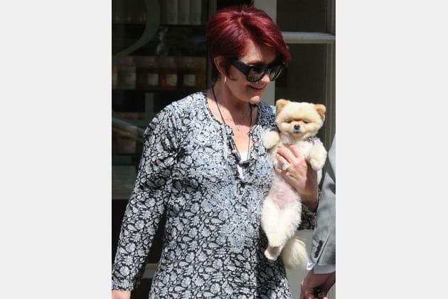 Sharon Osbourne et son adorable petit chien