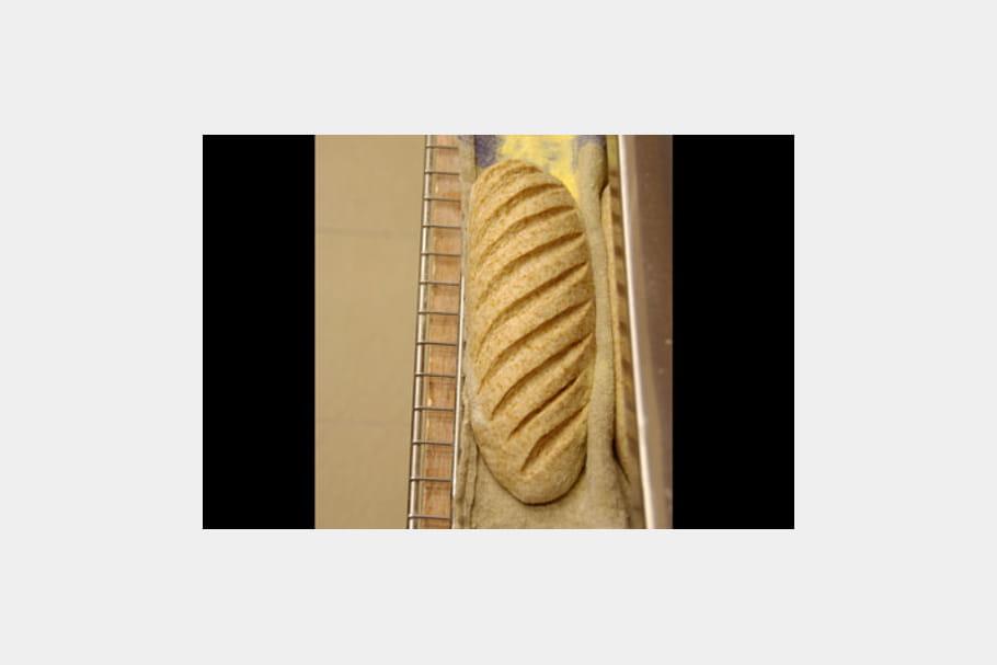 Des pains au levain naturel