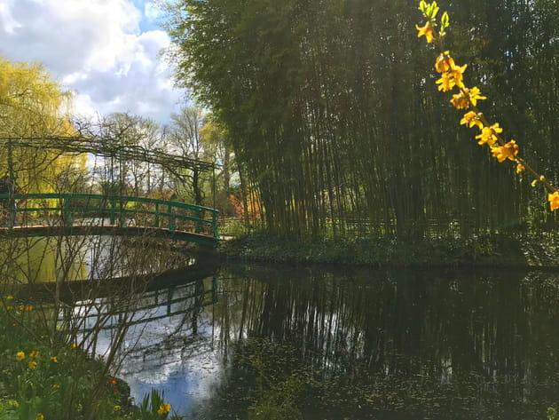 Pont japonais côté Jardin d'eau