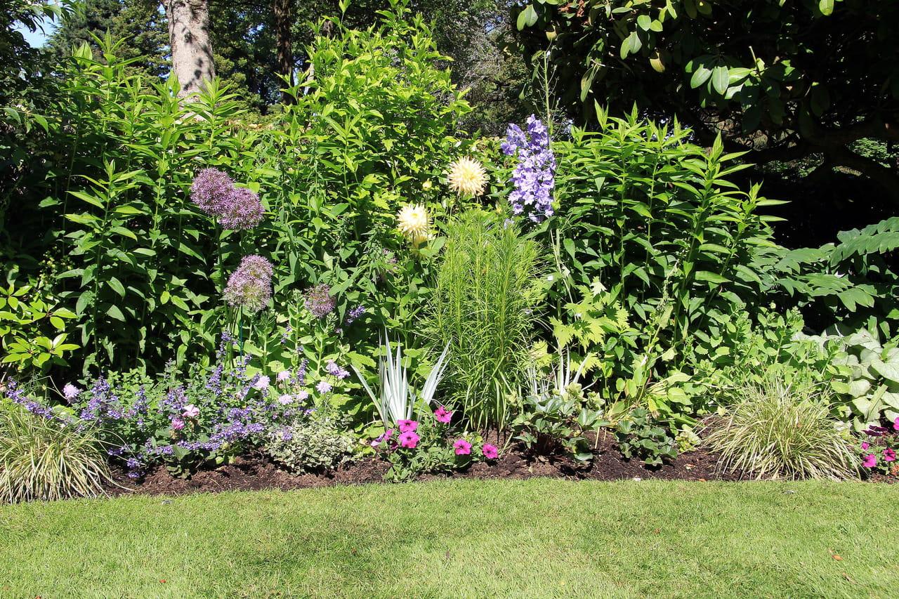 que faire au jardin en juillet et en août ?