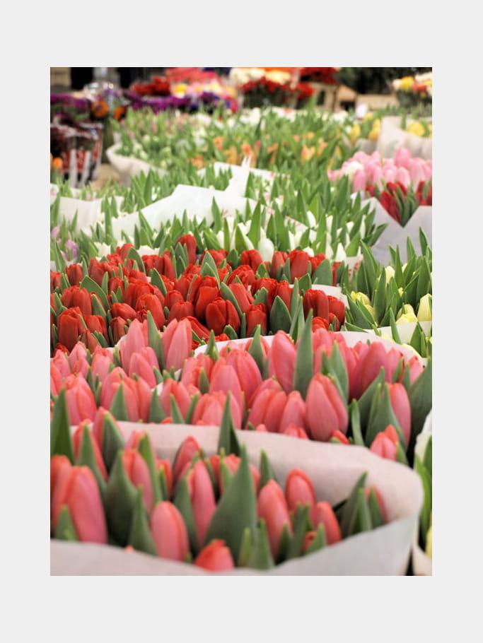 50 millions de bouquets