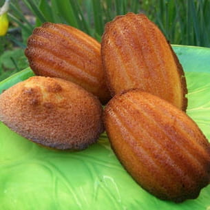 madeleines aux zestes d'orange