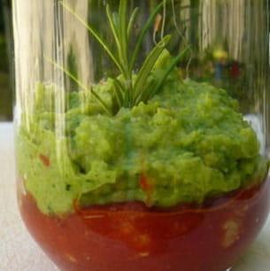 verrines en rouge et vert