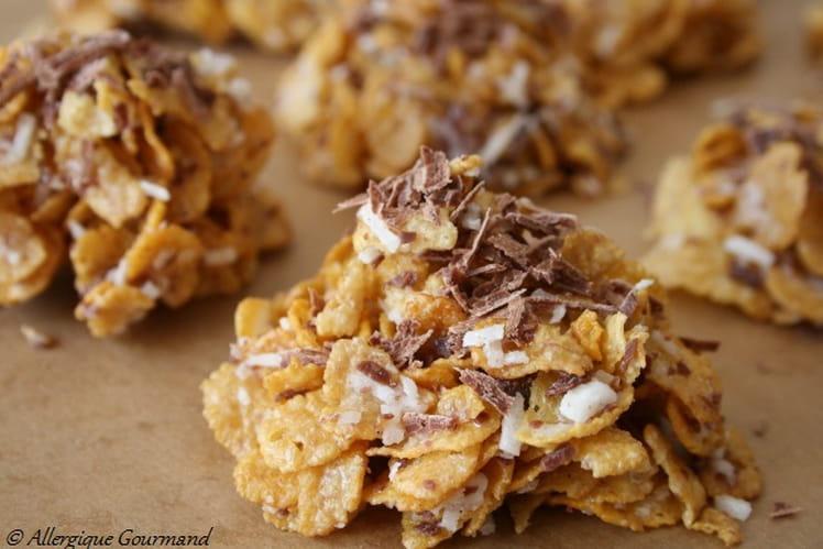 Roses des sables, noix de coco, éclats de chocolat, Bio, sans oeufs, gluten ni lait