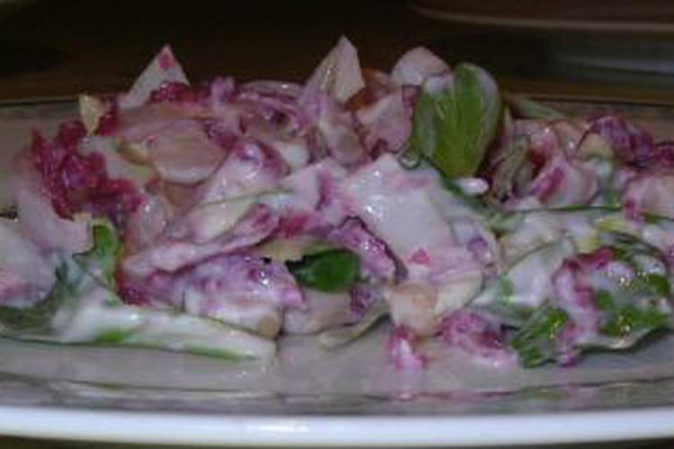 Salade d'endives au chou rouge et haricots blancs