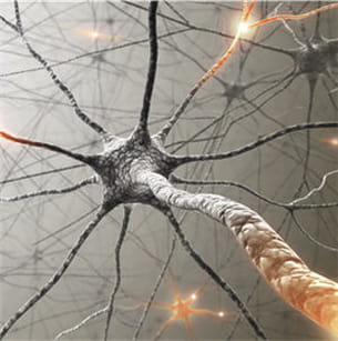 les blassures légères cérébrales ne provoquent pas d'handicap irréversible.