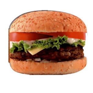 burgers, les meilleures recettes de jf mallet