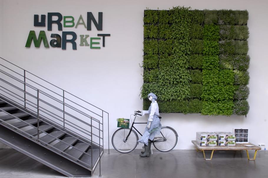 Urban Market chez Merci : place au potager urbain