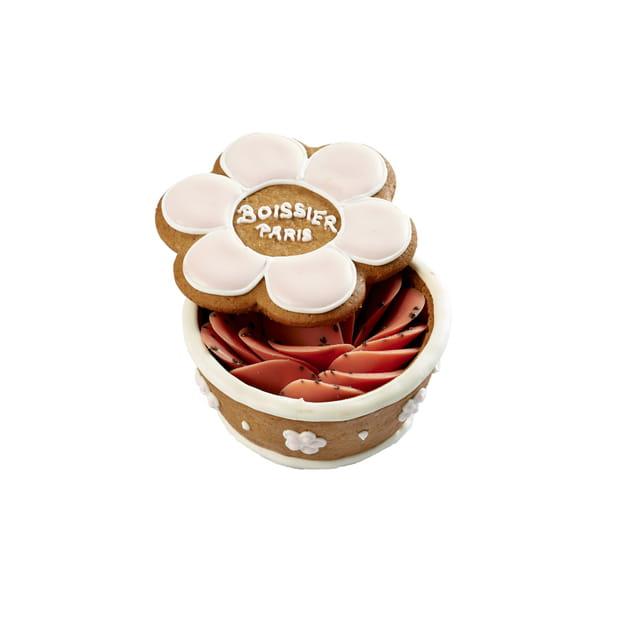 Pot Pétales de fleurs de rose de Boissier