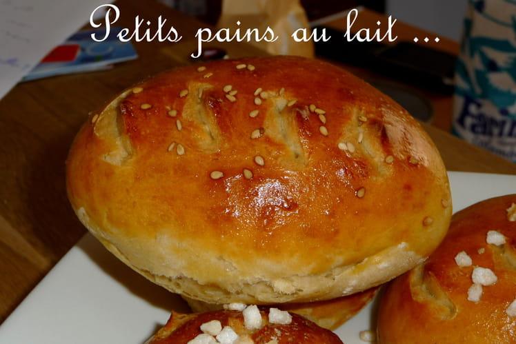 Petits pains au lait salés ou sucrés