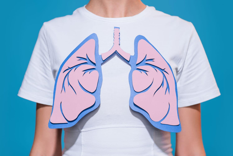 Poumon: anatomie, schéma, rôle, maladies, examens