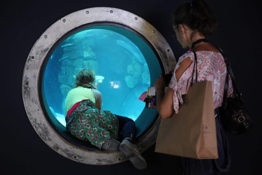Simon débarque à l'Aquarium de Paris pour une expo sur les requins!