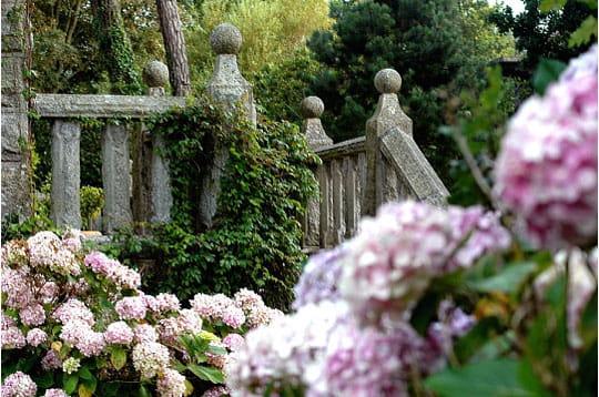 Terrasse aux hortensias