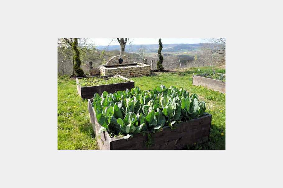 Un potager carr les jardins resplendissants au printemps journal des femmes for Jardin au carre