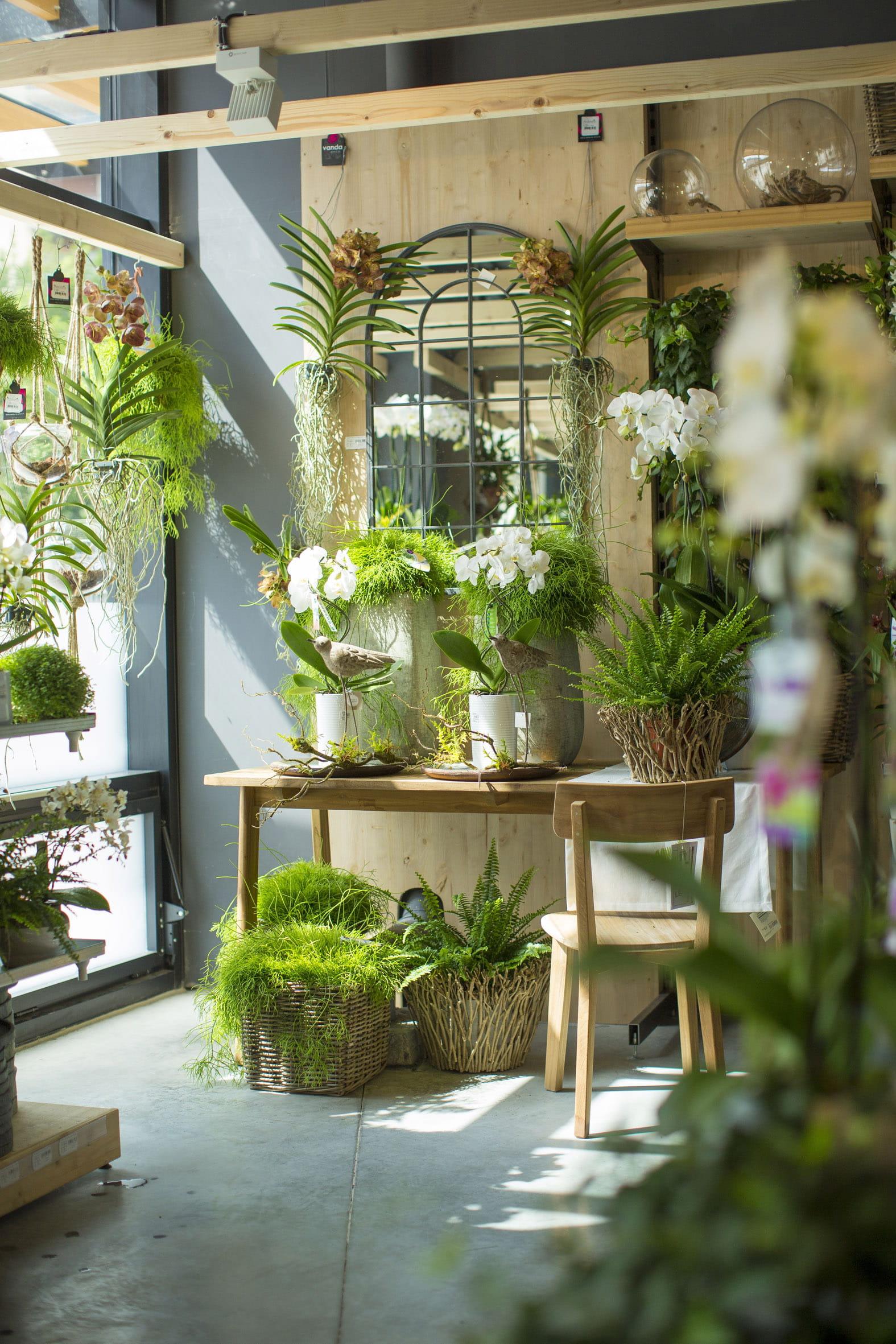 Botanic Ouvre Un Magasin 100 Bio Pr S De Paris