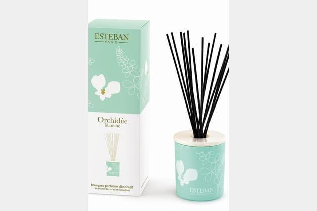 Bouquet parfumé par Esteban