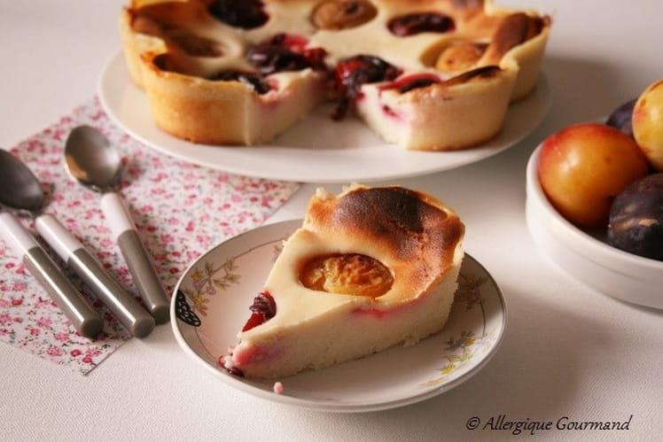Gâteau au fromage blanc et prunes, Bio, sans oeufs ni gluten