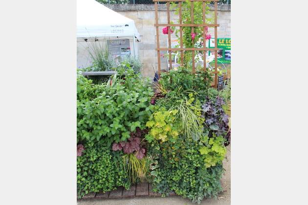 Mur végétal CityMur