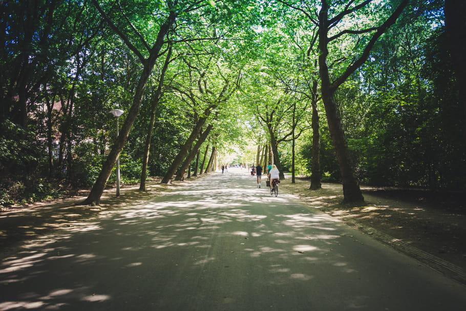 Réouverture des parcs et jardins: quand et comment? Quid de Paris?