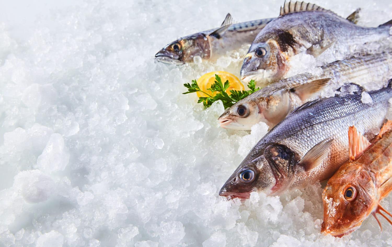 Tout sur les poissons: les choisir, les conserver, les cuisiner...