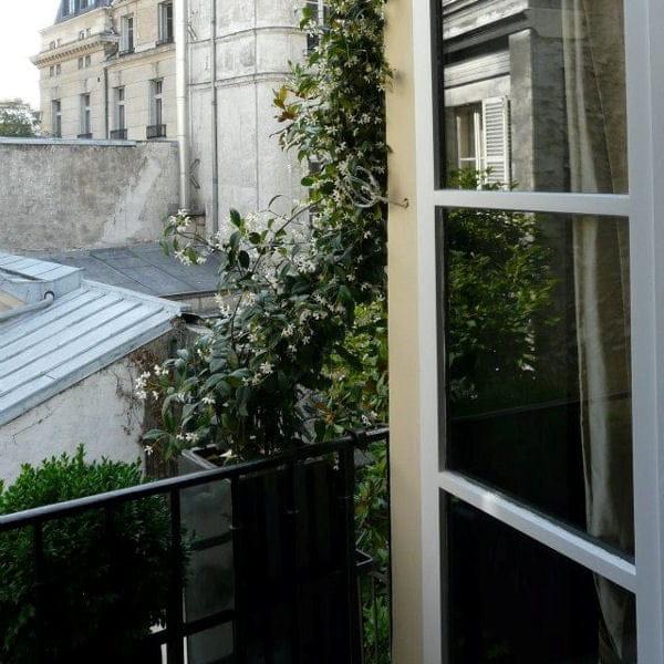jasmin-sur-une-balustrade-de-balcon