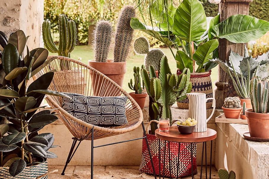 La décoration joue l'inspiration mexicaine à fond