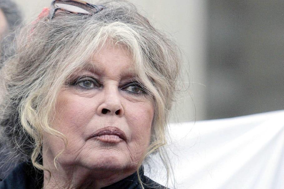 """Brigitte Bardot caresse les pangolins, chasse Macron et """"méprise"""" les humains"""