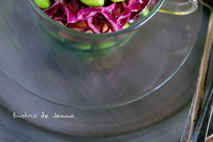 Salade de chou rouge aux pommes   (Cranberry et edamame - vinaigrette au miel)