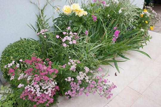 Des bouquets de fleurs dans les tons pastels