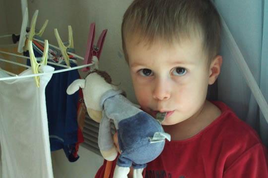 Nolan et son doudou âne