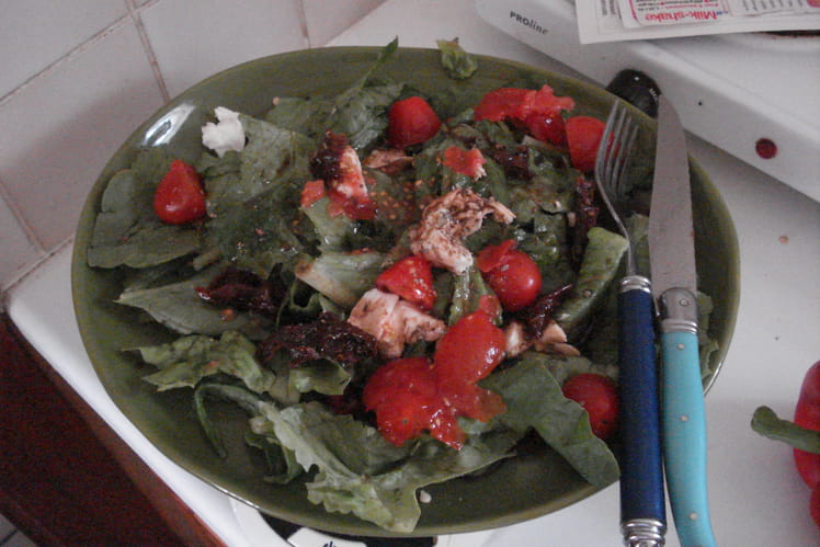 Salade mozzarella tomates fraîches et séchées