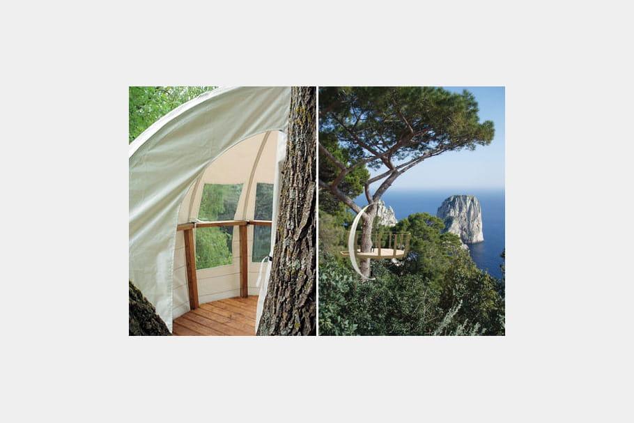 la branche artificielle laisse vivre l 39 arbre. Black Bedroom Furniture Sets. Home Design Ideas