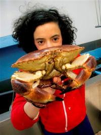 'la cuisine funky d'agathe' est sorti en avril 2011.